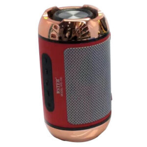 WS100 Bluetooth Speaker MINI Outdoor Wireless Base Portable Speaker