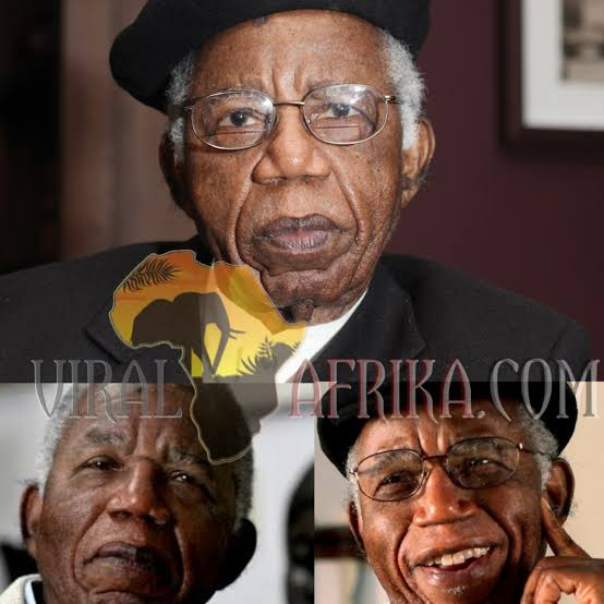 Chinua Achebe Biography, Age, Books, Facts and Death
