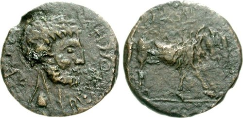 Coins in King Bocchus II's name (Ancient Kingdom of Mauretania)