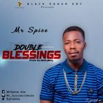 Download Mr Spice - Double Blessing mp3