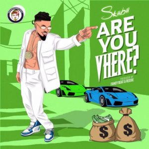 skiibii - are you vhere mp3 download