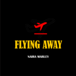 Naira Marley flying Away Mp3 Download